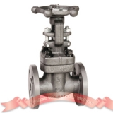 150# forged steel gate valve