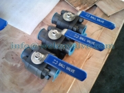 3-pcs compact forged body ball valve