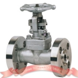 F316 forged steel gate valve